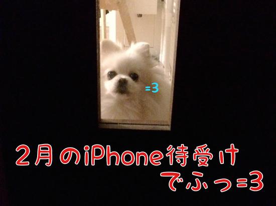 2月のiPhone壁紙でふっ=3 -2.JPG