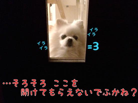 2月のiPhone壁紙でふっ=3 -3.JPG
