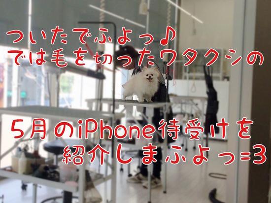 5月のiPhone待受けでふっ=3 -4.jpg