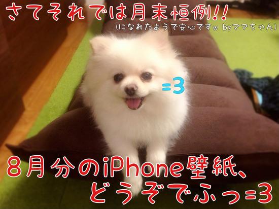 8月分iPhone壁紙配布でふっ=3 -5.JPG