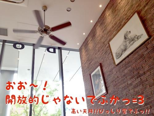 ドッグデプトカフェ。その1-2.JPG