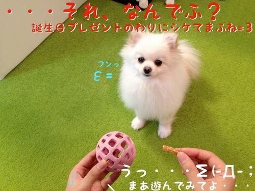 プレゼント(一応誕生日の)-2.JPG
