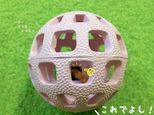 プレゼント(一応誕生日の)-3.JPG