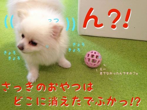 プレゼント(一応誕生日の)-4.JPG