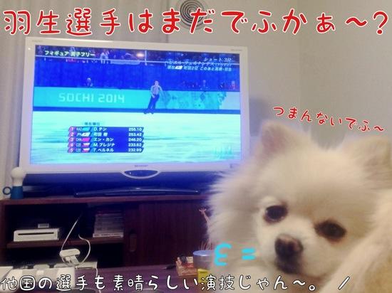 フィギュアスケート観戦。 -1.JPG