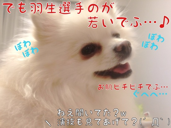 フィギュアスケート観戦。 -4.JPG