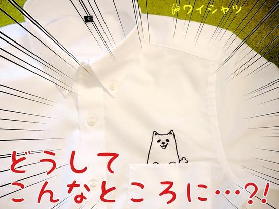 ワタクシが・・・!!  -2.JPG