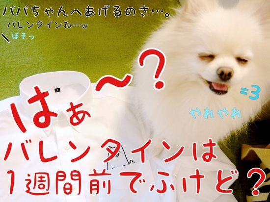 ワタクシが・・・!!  -4.JPG
