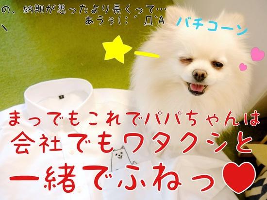 ワタクシが・・・!!  -5.JPG