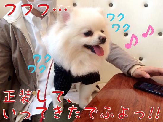 ワタクシ今日で4歳でふっ=3 -4.JPG
