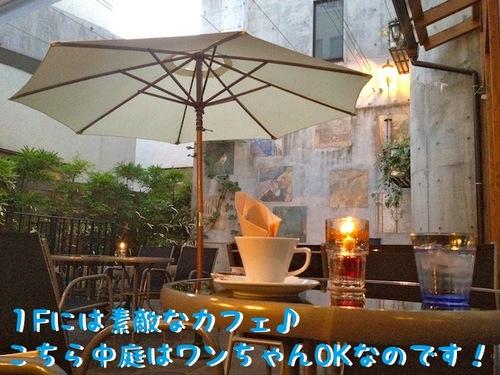 ワンちゃんOKのカフェで。-2.JPG