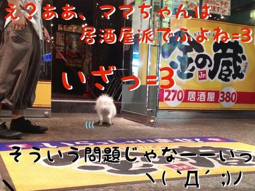 初めての新宿散歩 -その1- -5.jpg