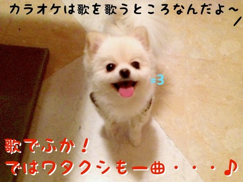 初カラオケでふっ=3 -1.JPG