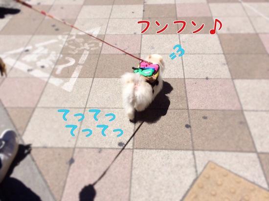 箱根へ=3 -2.jpg