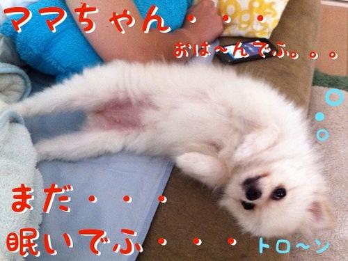 自称『いいオンナ』の朝-2.jpg