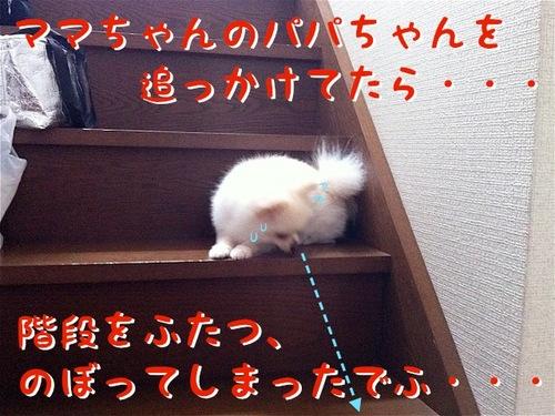 降りれない-1.JPG