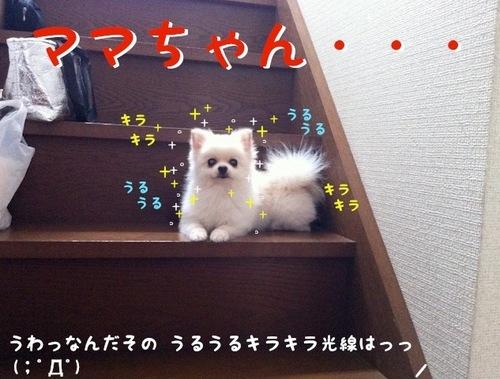 降りれない-3.JPG