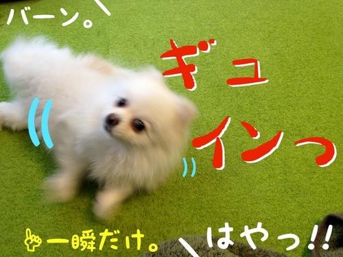 3歳の誕生日!-4.JPG