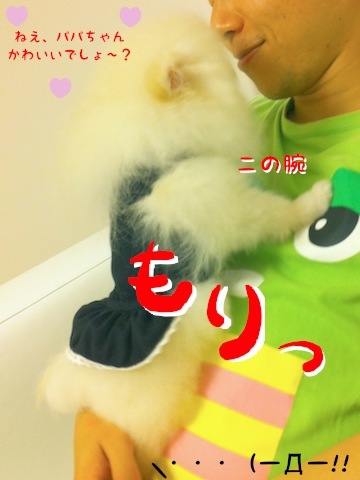 IMG_2186_2.JPG