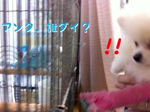IMG_3192.JPG