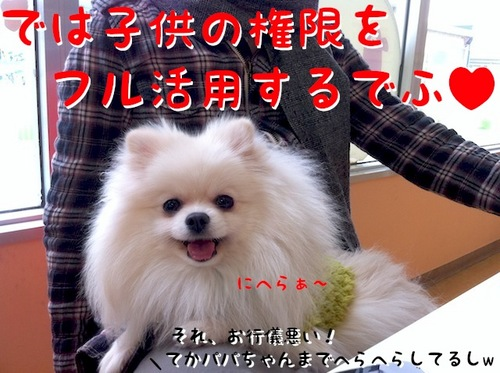 IMG_7508.JPG