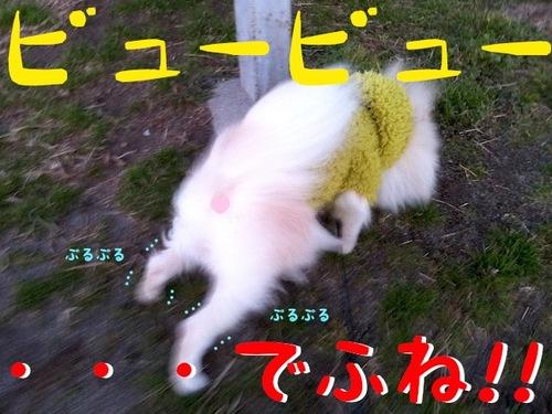 IMG_7649.JPG