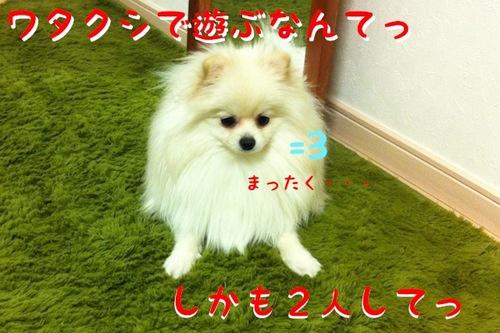 IMG_7942.JPG