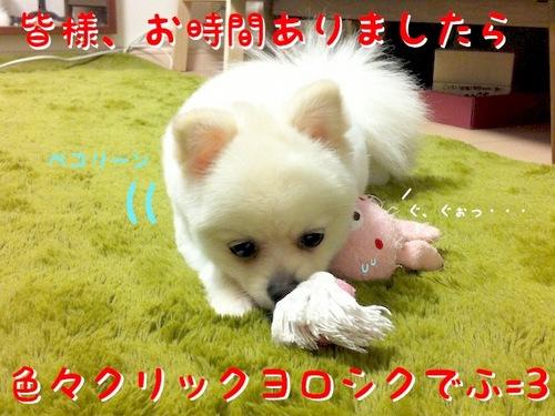IMG_8682.JPG