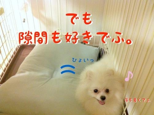 Photo 10月 09, 10 13 53 午後.jpg