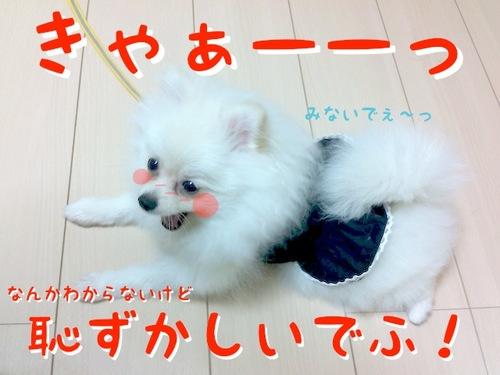 Photo 10月 22, 10 54 34 午後.jpg