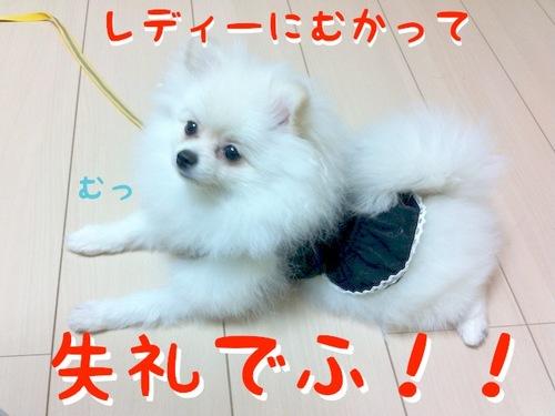 Photo 10月 22, 10 56 55 午後.jpg