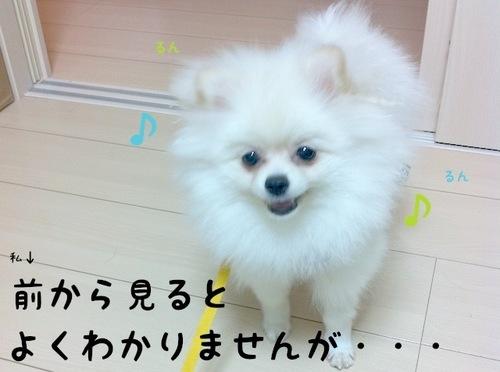 Photo 10月 22, 10 59 39 午後.jpg