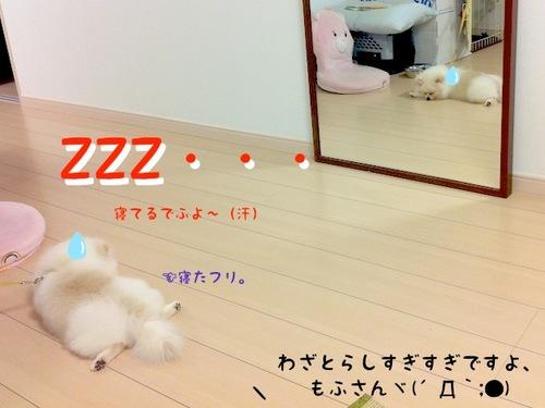 Photo 10月 24, 8 17 25 午後.jpg