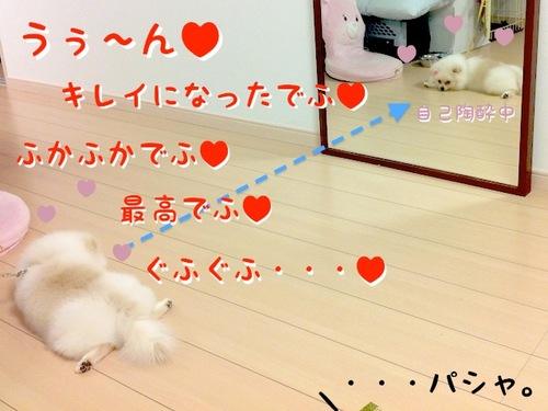 Photo 10月 24, 8 17 49 午後.jpg