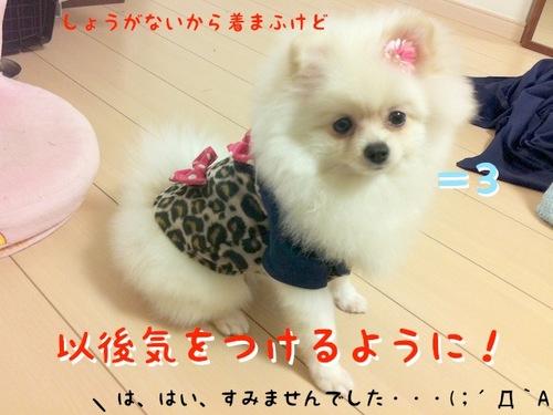 Photo 10月 26, 8 00 51 午後.jpg