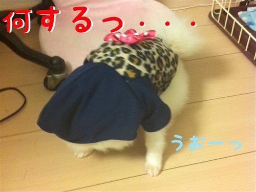 Photo 10月 29, 3 41 59 午後.jpg