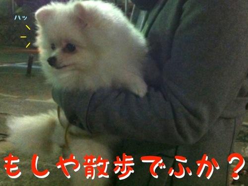 Photo 11月 07, 2 37 51 午後.jpg