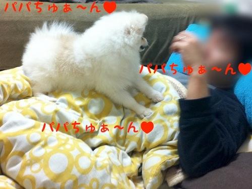 Photo 11月 07, 2 38 40 午後.jpg