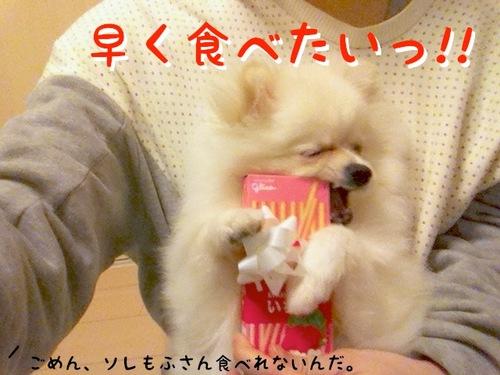 Photo 11月 12, 7 23 55 午後.jpg