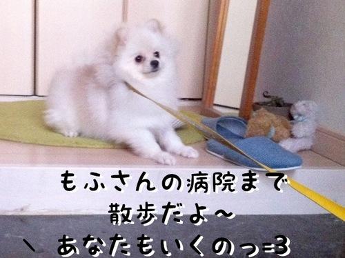 Photo 11月 16, 10 56 47 午後.jpg