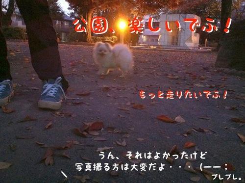 Photo 11月 22, 11 58 57 午後.jpg