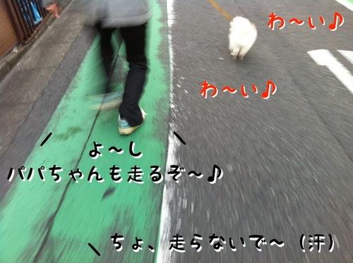 Photo 11月 23, 1 50 02 午前.jpg