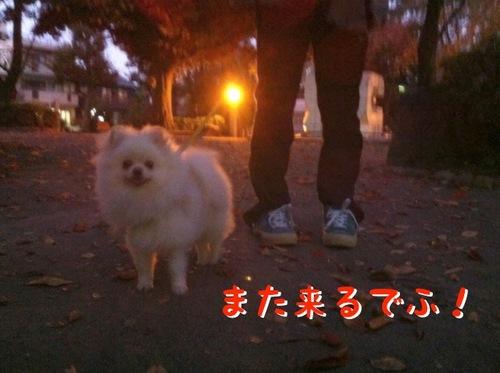 Photo 11月 23, 12 00 08 午前.jpg