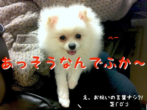 Photo 11月 25, 11 17 18 午後.jpg