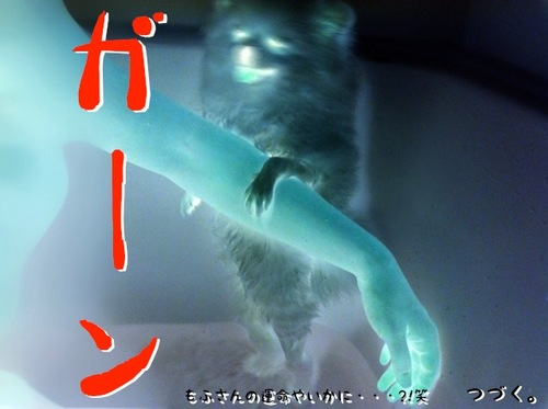 Photo 11月 27, 4 41 19 午後.jpg