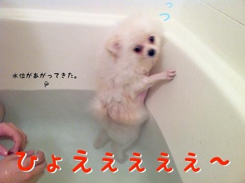 Photo 11月 29, 2 51 05 午前.jpg