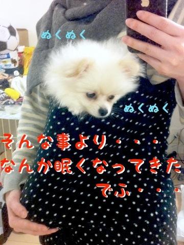Photo 12月 04, 6 46 23 午後.jpg