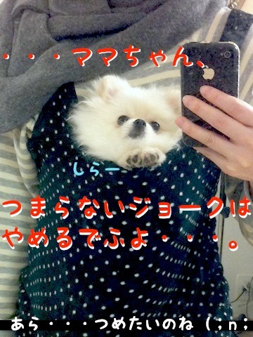 Photo 12月 04, 7 05 24 午後.jpg