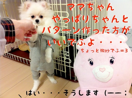 Photo 12月 05, 8 07 23 午後.jpg
