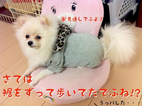 Photo 12月 05, 8 09 55 午後.jpg